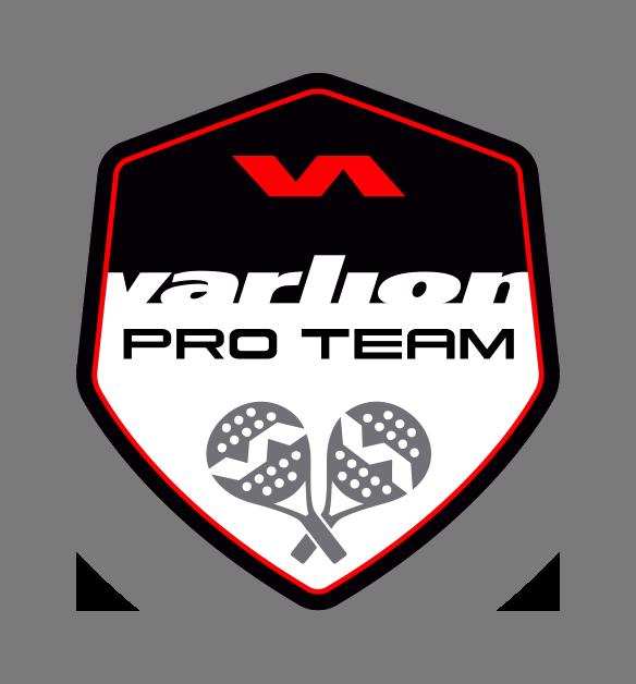 Logo Pro Team